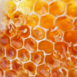 How honey extract reinforces the scalp's natural immunity
