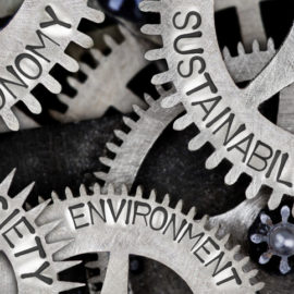 Sustainable business ecosystem as a differential value, by Dr. Jordi Oliver (Inèdit)